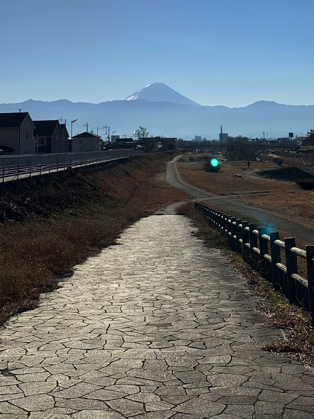 sumomo365_201901_New_Year_02.jpg