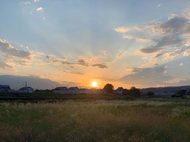 sumomo365_201906_kako_03.jpg