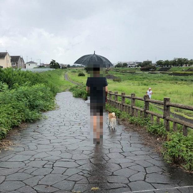 sumomo365_201908_Obon_04.jpg
