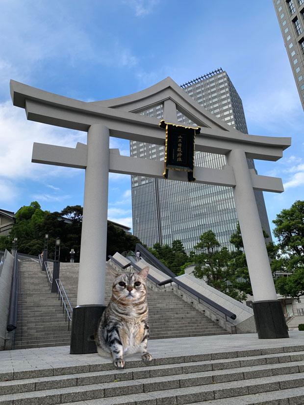 sumomo365_201909_Hie_Shrine_00.jpg